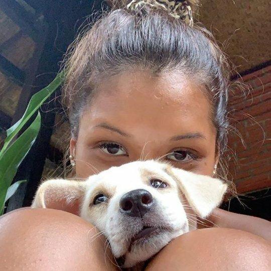 Отель на Бали приглашает на щенячью терапию Интересное