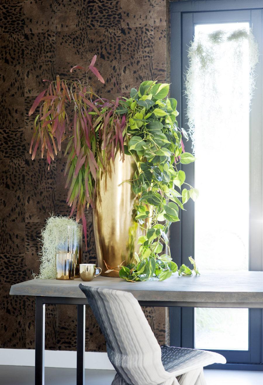 Комнатные растения в интерьере. 4 идеи декора гостиная,декор,дизайн,дом,жилье,интерьер,квартира,комнатные растения,мебель,полезные советы,ремонт,спальня