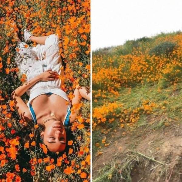 Инстаграм против реальности: снимки, раскрывающие правду об идеальных фото Интересное