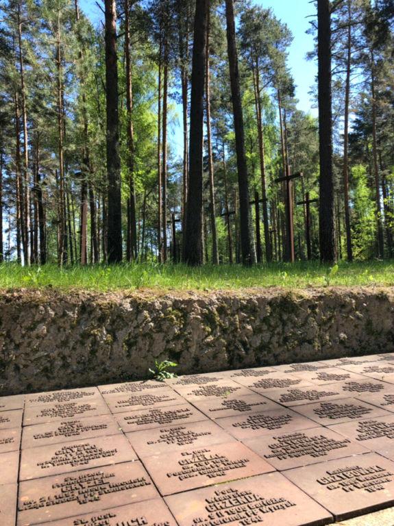 Не только Катынь: польские захоронения в Медном История