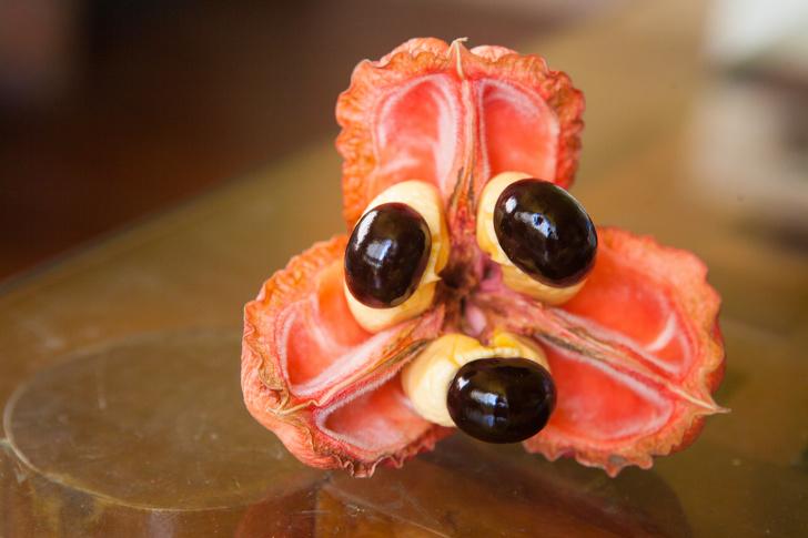16 редких экзотических фруктов, которые вы увидите в первый раз страны,туризм