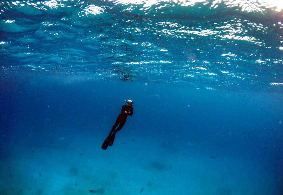 Большой Барьерный риф в фотографиях