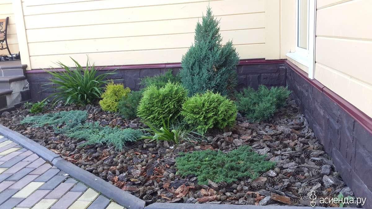 Обустройство теневой зоны сада ландшафтный дизайн,сад,теневая зона сада