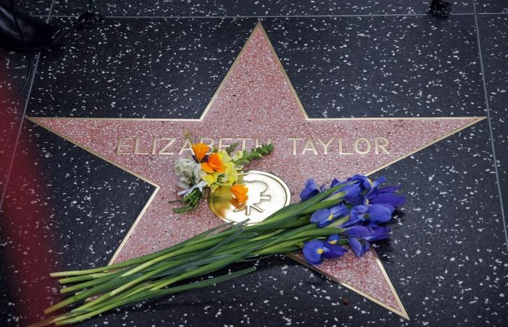 История жизни Элизабет Тейлор, вызывающая столько же зависти, сколько и сочувствия загадочность,знаменитости,интересное,очарование,фотографии