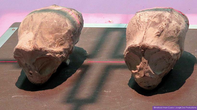 Инопланетные мумии из Перу: объекты изучения Тайны и мифы